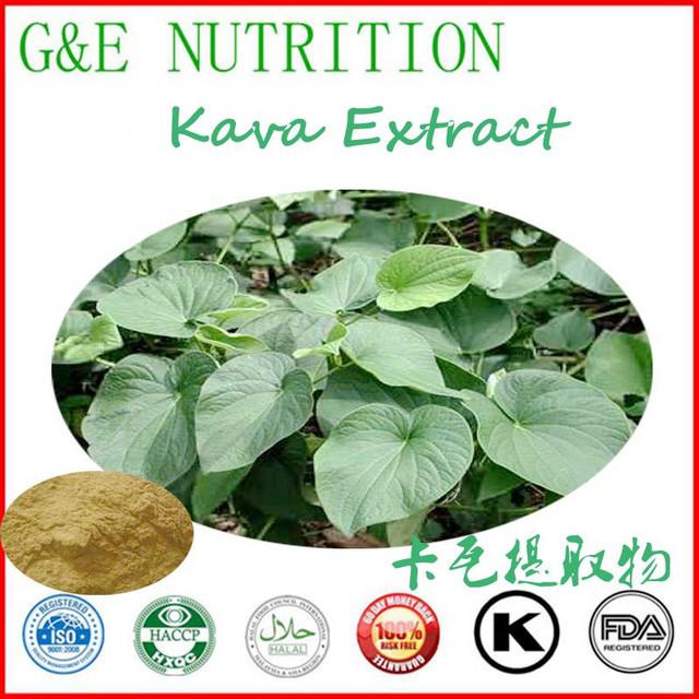 Kava kava extrair/extrato de Kava kava pó 100g