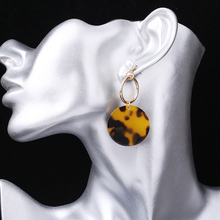 New fashion earrings temperament wild pop pendant European and American style womens new exotic jewelry