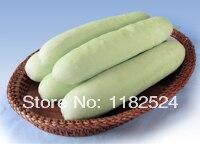 Chinese Sayali 518 F1 Cucumber Seeds Fruit Vegetables Seeds (30 SEEDS)