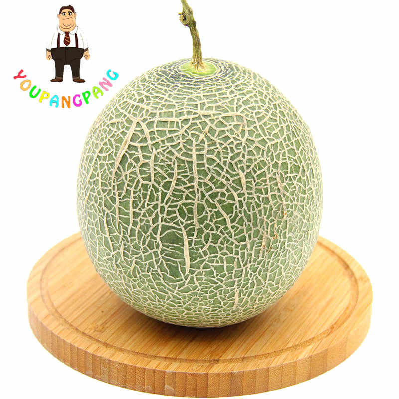 BIG SALE Melon Bonsai, Melon Bonsai, Kentang Manis, Lezat Buah Langka Bonsai, 20 Pcs