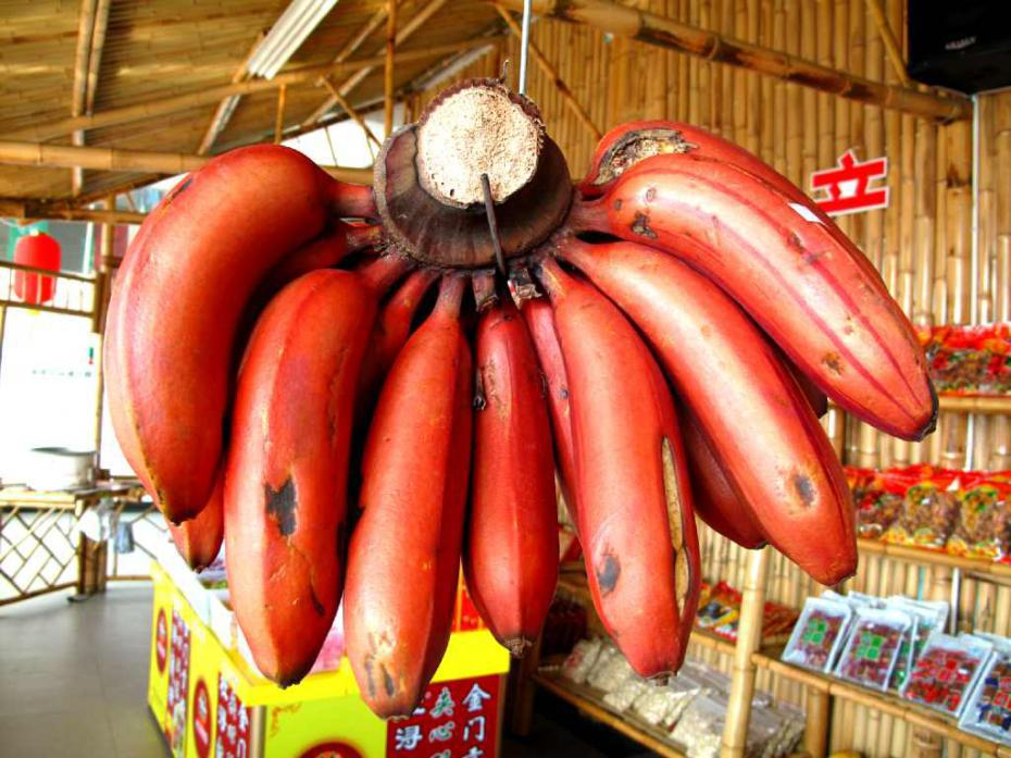 100 Pcs Very Rare Mini Banana Bonsai Outdoor Perennial Flowering Plants Milk Taste Delicious Fruit Tree For Home & Garden 4