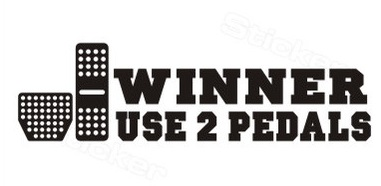 High quality WINNER USE 2PEDALS DIY Car sticker and decals cool modified accessories CF1136