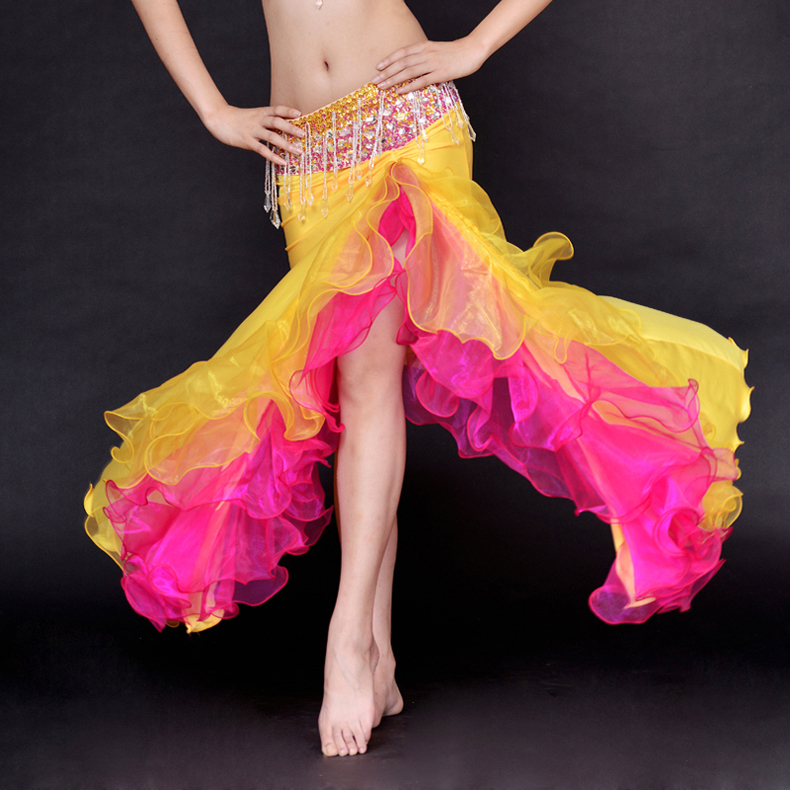 Performance Belly Dance Clothes Women Professional Belly Dance Skirt Girls Dance Clothing Skirt