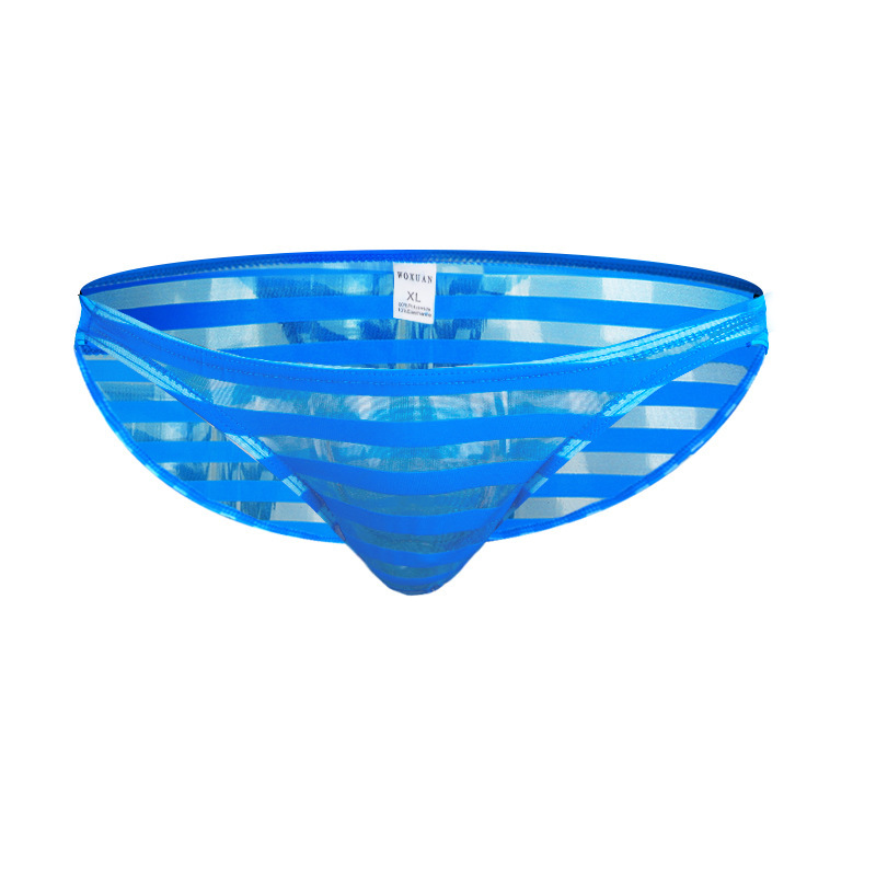 Men's Underwear Men's Briefs Mesh Transparent Stripes Panties Sexy Mens Underwear Gay WX18BJN