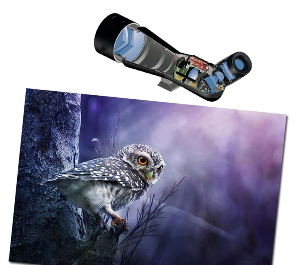 JouFou 20-60X80 HD Spotting Scope Waterproof Zoom Target Shooting Optical Glass High Power with Tripod Birdwatching (8)