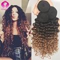 Annabelle mink cabelo brasileiro onda profunda virgem cabelo 3 bundles 3 tom do cabelo ombre 1b 4/30 cabelo brasileiro encaracolado profundo tece feixes