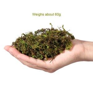 Image 5 - WINOMO 3 упаковки искусственная трава мох имитация Декор зеленые растения искусственная трава мох лишайник Сад домашний декор патио A20