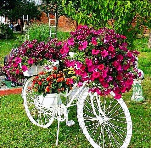 200pcs/bag Heirloom Hanging Petunia Mixed Seeds, Professional Pack Very Beautiful Garden Flowers Light Up Your Garden