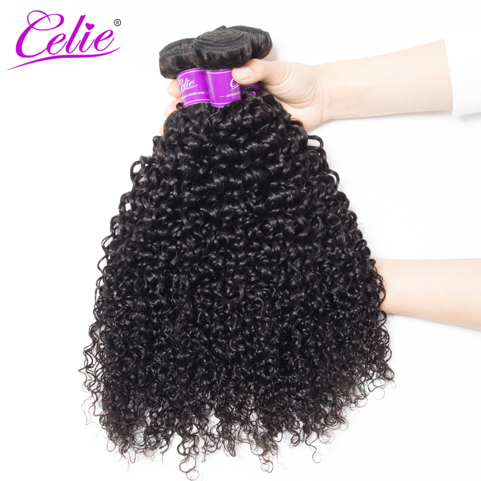 Celie Hair Peruvian Curly Hair 4 Bundles 100 Human Hair Weave Bundles Natural Black Color Remy