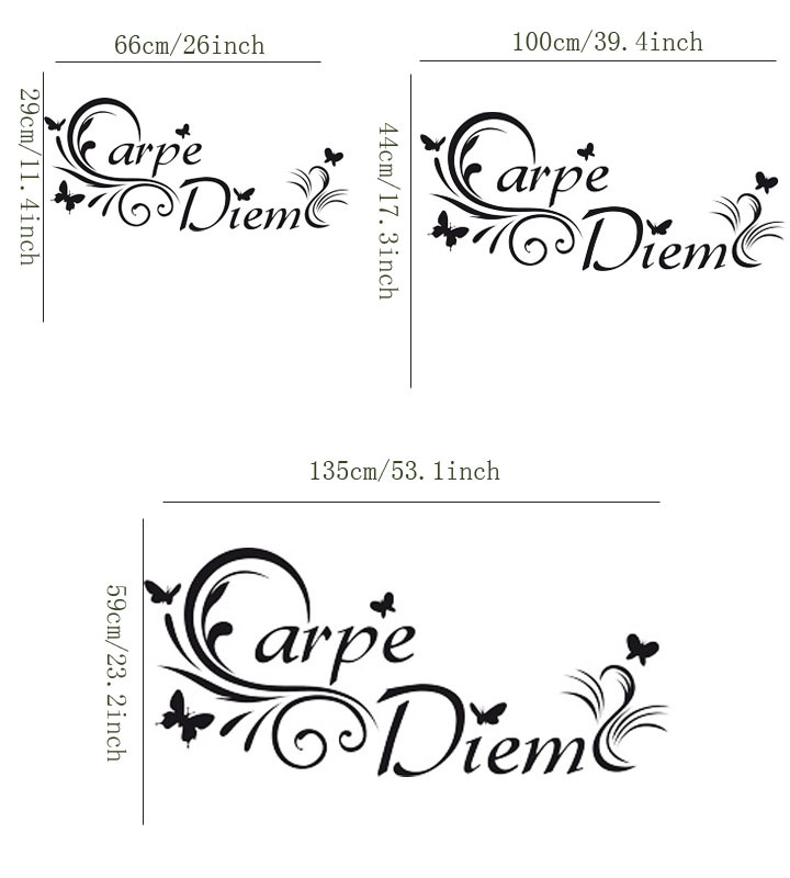 Classic Wall Paper Latin Carpe Diem Seize The Day Wall Sticker Quotes Modern Wall Art Decals