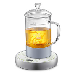 Electric kettle Health cup electric hot water mini office brew tea heater heating