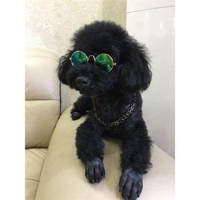 1Pcs Hot Sale Dog Pet Glasses For Pet Products Eye-wear Dog Pet Sunglasses Photos Props Accessories Pet Supplies Cat Glasses 3