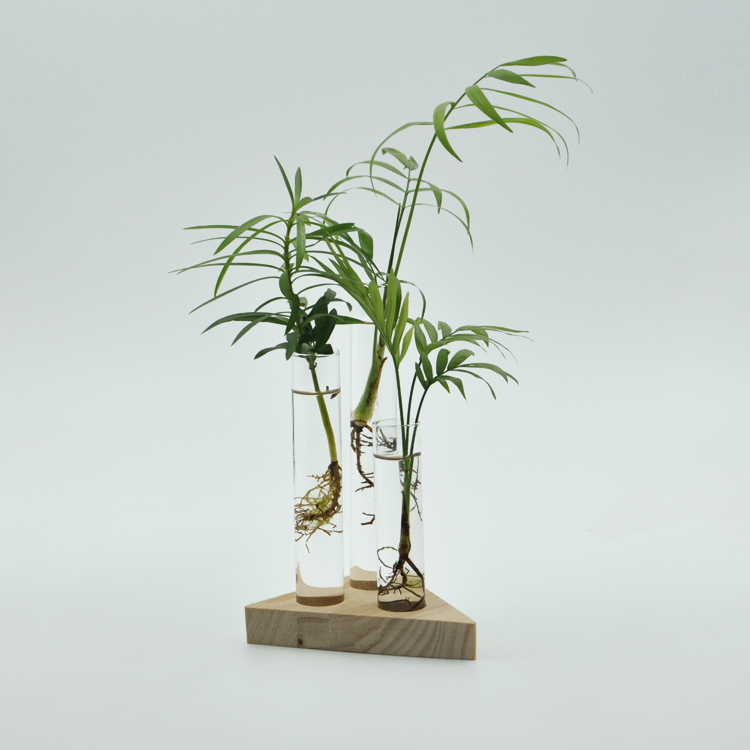 online get cheap flower test tubes alibaba group. Black Bedroom Furniture Sets. Home Design Ideas