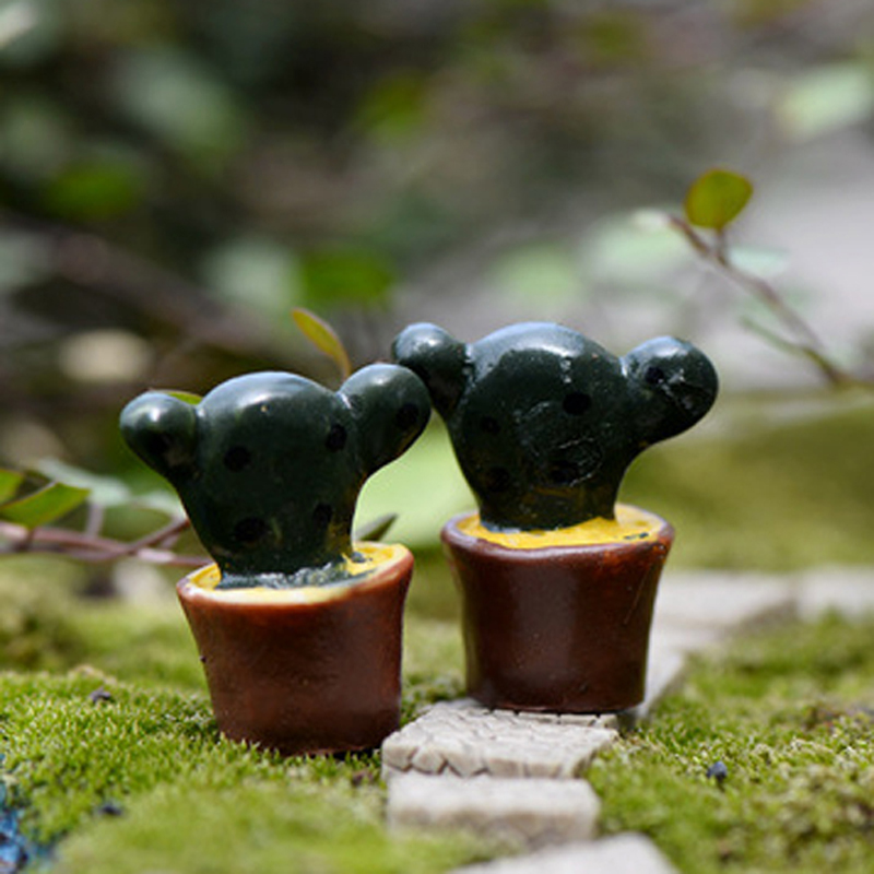Miniatura de cactos vender por atacado   miniatura de cactos ...