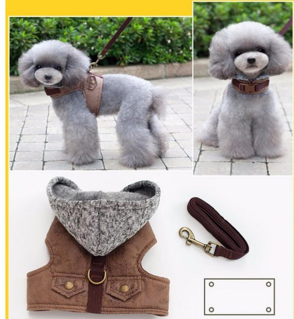 Small Dog Harness Outdoor Walking