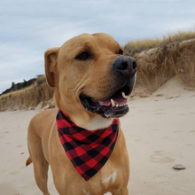 Buy  ckerchief Dogs Accessories New Years Gifts  online