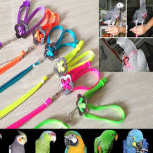 Harness Leash Parrot Bird 0.8cm midth 1.2M Length Random Multicolored Adjustable Outdoor Rope Leash fit 1-23cm chest(China)
