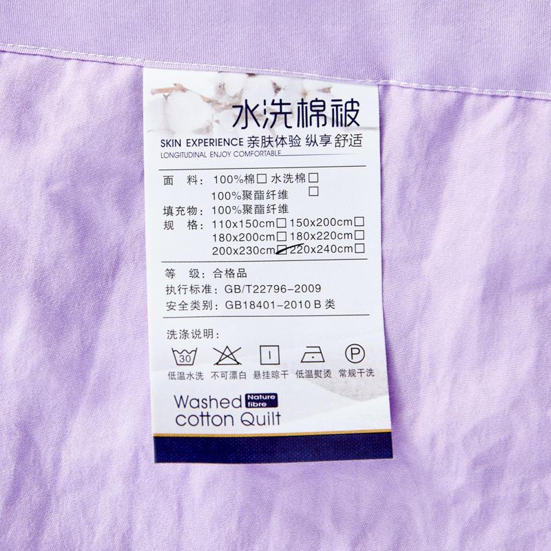 盆景-紫78