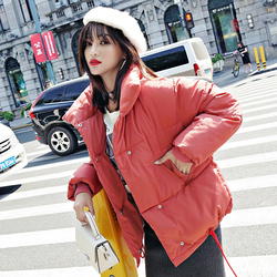 Stand Collar Breasted Buttons Female Coat Winter Womens Outwear Winter Jackets Autumn Cotton Padded Chaqueta Mujer Invierno 4