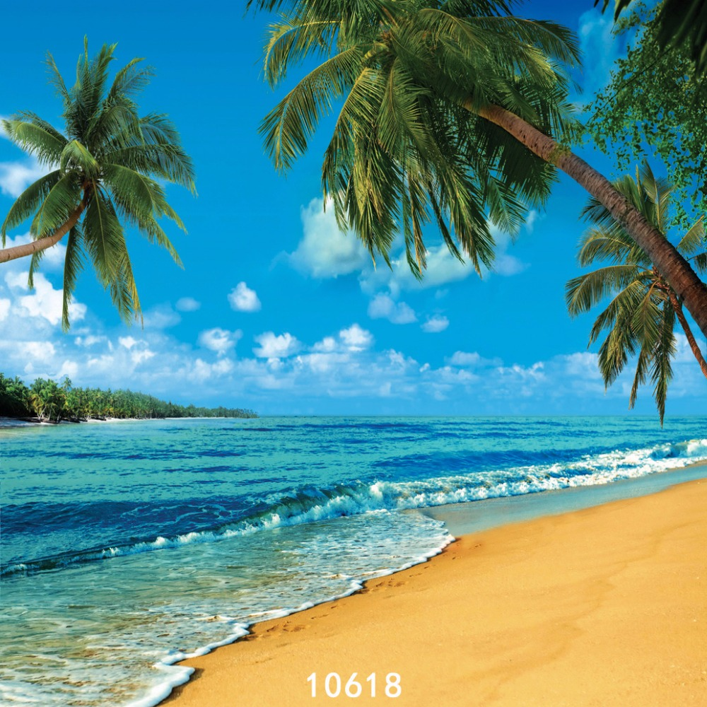 Beach Seaside Coconut Trees Photography Background