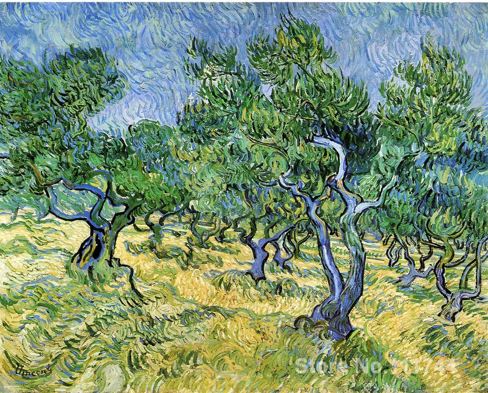Vincent Van Gogh paintings of Olive Grove impressionism art High quality Hand paintedVincent Van Gogh paintings of Olive Grove impressionism art High quality Hand painted