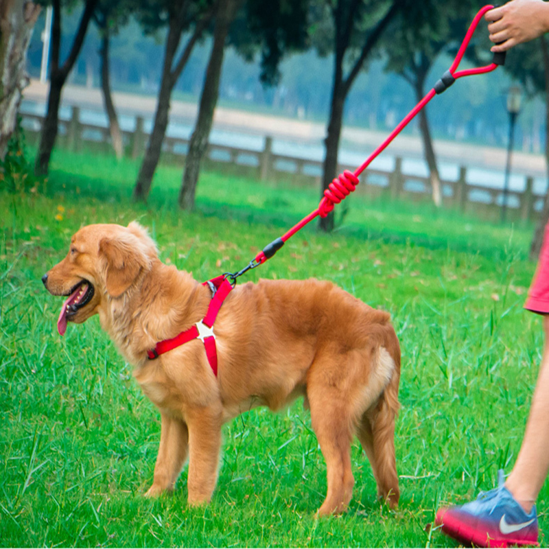 Colorful Durable Pet Dog Harnesses Leads Nylon Leash Sets for Husky Tractions Rope For Daily Walking And Training S M L