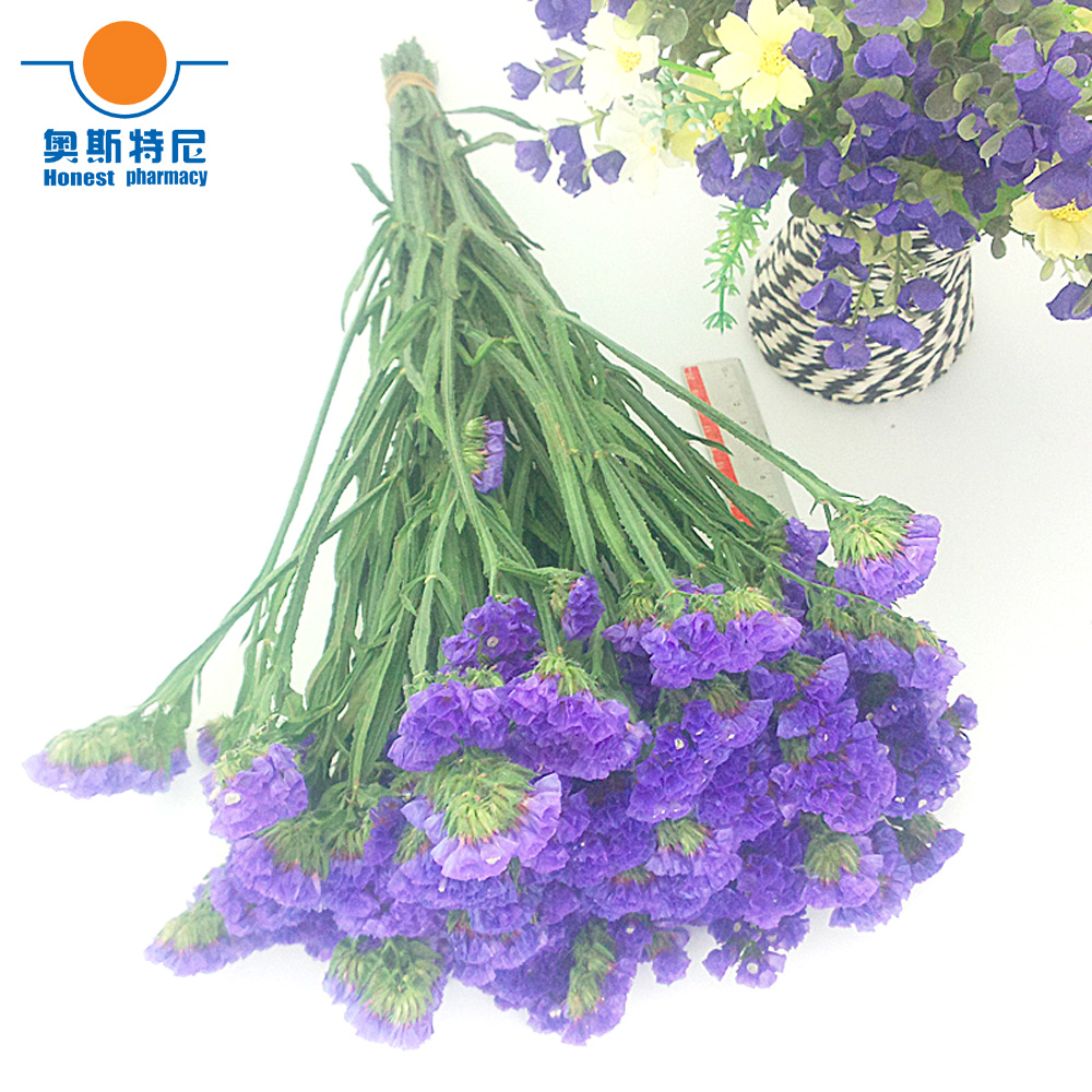Blue Color Dried Natural Flower Bouquets Natural Dried Myosotis