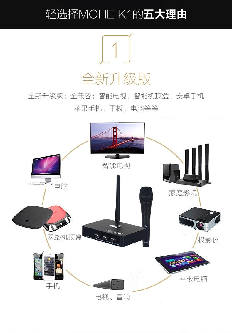 Handheld MIC Wireless Microphone System Karaoke player KTV Karaoke Echo Mixer System Digital Sound Audio Mixer Singing Machine
