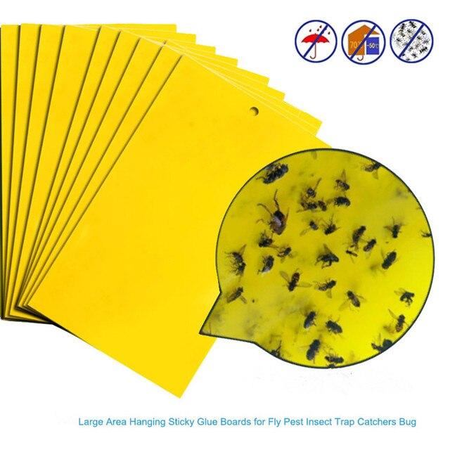 Lepkie muchy 2020 5 sztuk silne muchy pułapki Bugs lepkie deski łapanie mszyce owady urządzenie unieszkodliwiające szkodniki