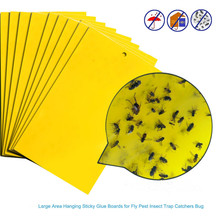 Sticky flies 2020 5Pcs Strong Flies Traps Bugs Sticky Board Catching Aphid Insects Pest Killer