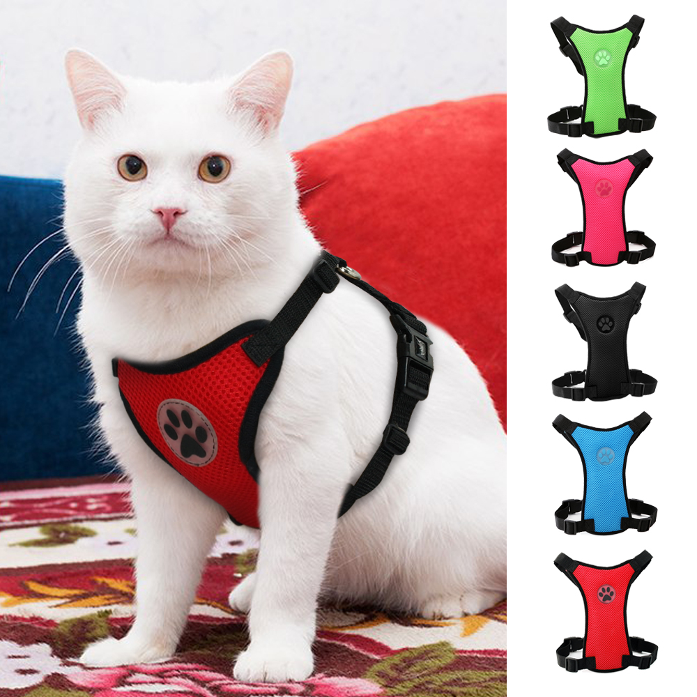 Mesh Cat Harness Nylon Cats Kitten Harness For Daily Walking Blue /red/green/pink/black