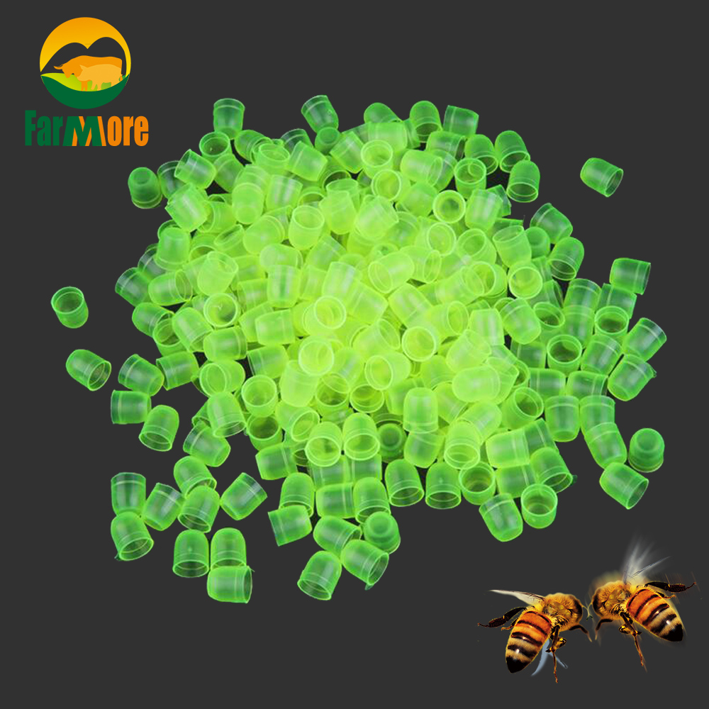 1000 Pcs / Lot Bee Queen Cell Cup Queen Bee Rearing Fertility Cell Incubation Breeding Beekeeping Equipment  Apiculture Suppiles