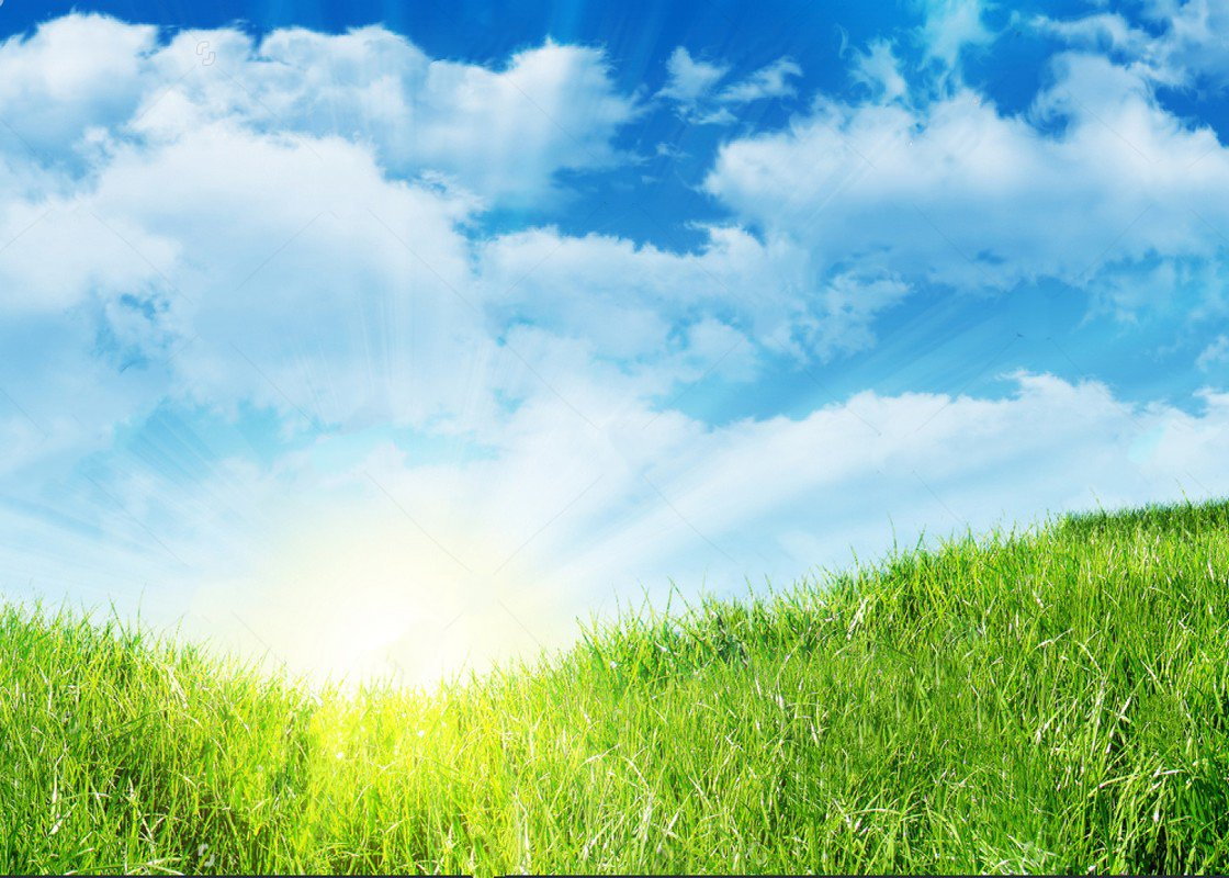 Blue sky white clouds spring green grass outdoor nature scenery easter backdrops Vinyl cloth Computer print wall Backgrounds