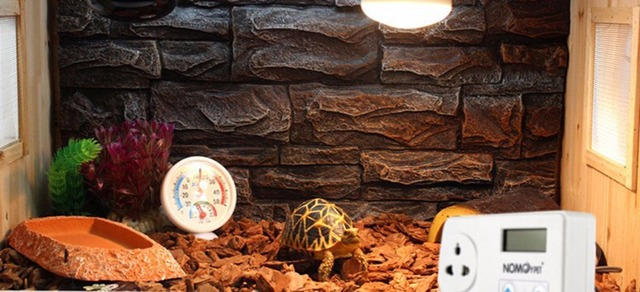 1 Pcs Reptile Incubator Tortoises Lizards Snakes Ceramic Heating Heat Lamps Thermostat Smart Thermostat Thermostat