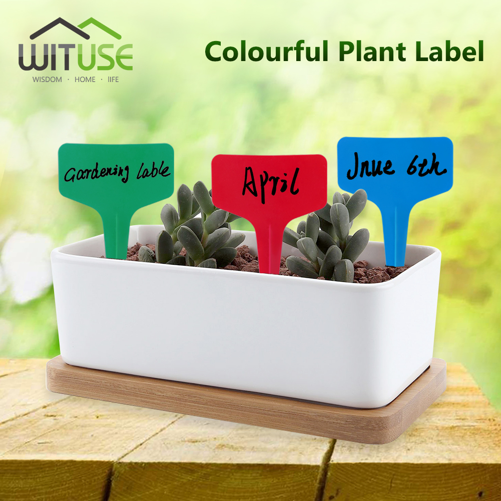 Image 2 - 50X 10x2cm/6x10cm Plant Plastic Labels Flower Tags Garden Signs Card Labeling Plants Seed Stake Farms Park Flower Pot Waterproof-in Plant Markers from Home & Garden