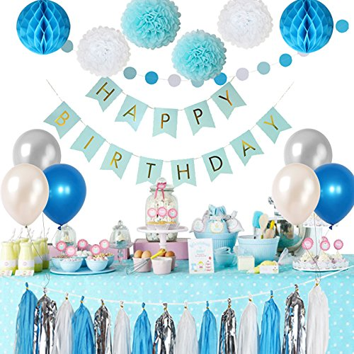 Frozen Theme White and Blue Party Decorations for Kids balloons, Pom Poms Flowers, birthday banner, paper Garland , Tassels Kit ...