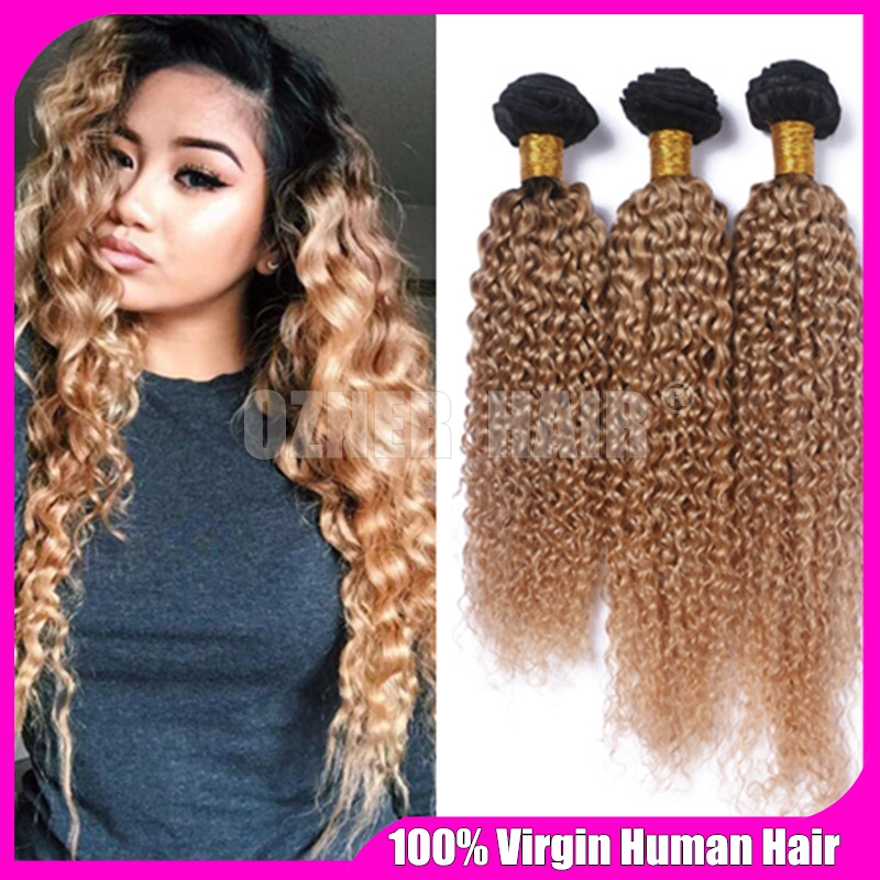 Two Tone Color Ombre Kinky Curly Hair Weave 3 Bundles 1b27 Honey