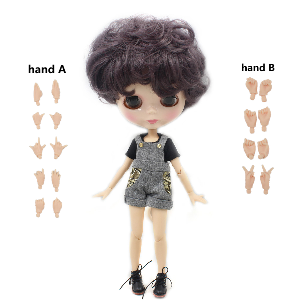 ICY Nude factory Blyth doll Male doll Series No BL9219 Dark purple curly hair Male Joint
