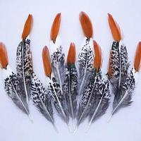 Livraison gratuite! 50 pcs 15 - 20 cm / 6-8in réel naturel faisan de dinde Plumage plumes pour cheveux bricolage artisanat accessoires