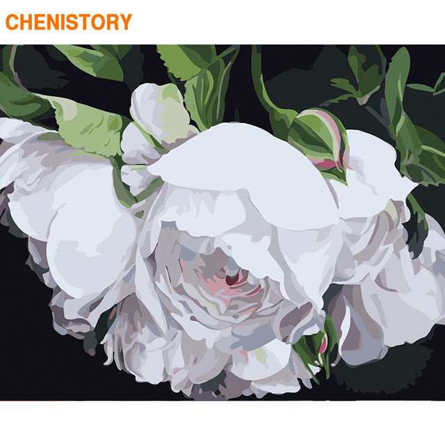 CHENISTORY Frame White Flower DIY Painting By Numbers Modern Home Decor Paint By Numbers Acrylic Canvas Painting For 60x75cm Art