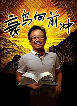 《衰鸟向前冲》2013年中国大陆剧情电影在线观看
