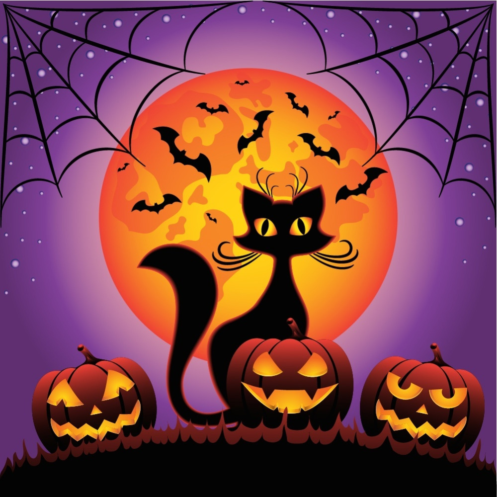 5D DIY Halloween Cartoon Cat Diamond Painting Full Square Bat Embroidery with Daimonds Paintings Pictures by Numbers 18x18 Inch5D DIY Halloween Cartoon Cat Diamond Painting Full Square Bat Embroidery with Daimonds Paintings Pictures by Numbers 18x18 Inch