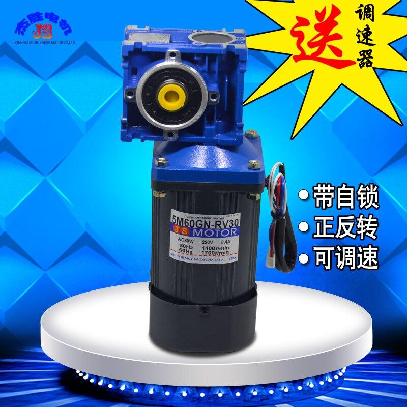 AC 220V 60W slowdown motor single-phase RV30 pan pot rod deceleration small