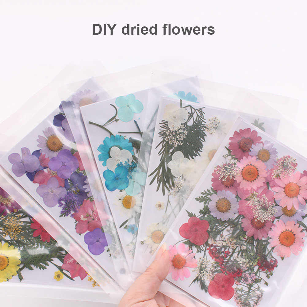 Pressed Flower Mixed Organic Natural Dried Flowers Portable Collection DIY Art Floral Decors Collection Gift P7Ding
