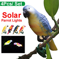 4 sztuk LED Solar papuga światło kolorowe ptak lampa dekoracja zewnętrzna w Lampy LED do hodowania roślin od Lampy i oświetlenie na