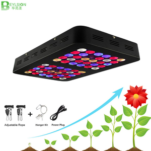 BEYLSION Full Spectrum 300W 600W LED Plant Growing Light Double Chips Plant Grow LED Lamp For Tent Greenhouses Hydroponics(China)