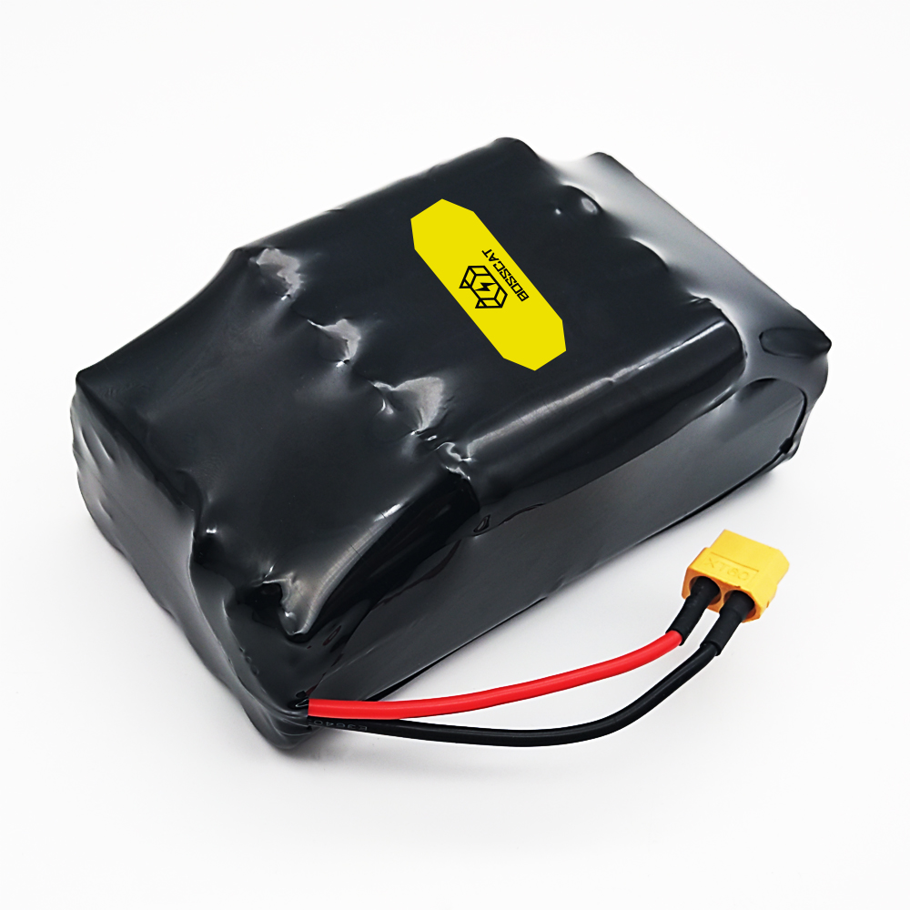Batterie au Lithium Rechargeable 10S2P 36 V pour batterie de Scooter batterie de vélo électrique