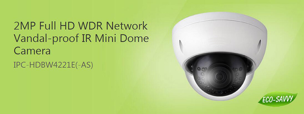 DAHUA 2MP WDR Network Vandalproof IR Mini Dome Camera with Fixed Lens IP67 without Logo IPC