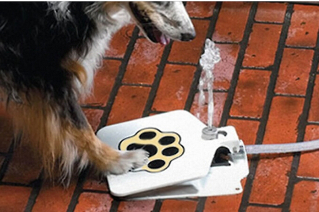 Automatic Outdoor Pet Dog Water Fountain Flesh Water Step Spray Puppy Dog Cat Pet Paw Water Drinking Fountain Pet Supplies
