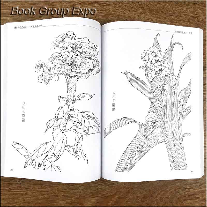 Image 4 - Chinese painting line drawing book Color pencil Flower Birds and insect coloring book for adults children-in Books from Office & School Supplies